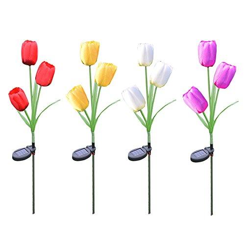 Tulip Garden Lights