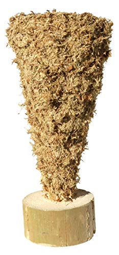 - Upside Down Christmas Tree Cone Sphagnum Moss Topiary Form - Large