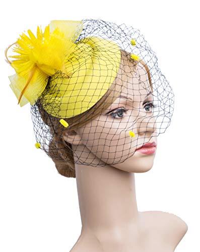 Cizoe Fascinator Hair Clip Pillbox Hat Bowler Feather Flower