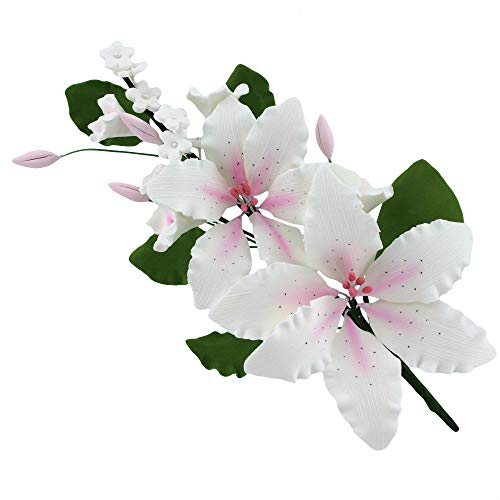(Double Rubrum Lily Spray, White with Pink, 1 Count by Chef Alan Tetreault)