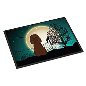 Caroline's Treasures BB2253JMAT Halloween Scary Irish Water Spaniel Indoor or Outdoor Mat 24x36, 24H X 36W, Multicolor 24