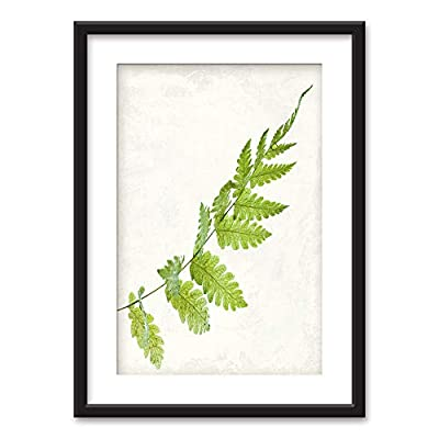 With Expert Quality, Unbelievable Picture, Framed Green Leaf Black Picture Frames White Matting
