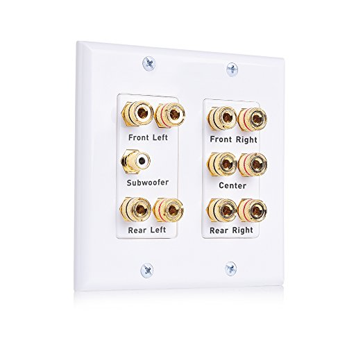 - Cable Matters Double Gang 5.1 Speaker Wall Plate (Home Theater Wall Plate, Banana Plug Wall Plate) in White