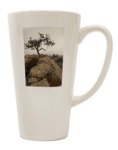 TooLoud Stone Tree Colorado 16 Ounce Conical Latte Coffee Mug