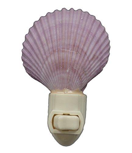 Violet Pecten Nobilis Seashell Night Light