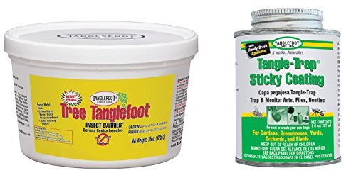 (Tanglefoot Bundle 2 Products Tree Insect Barrier Tub + 8-Ounce Tangle-Trap Brush On Sticky Trap Coating)