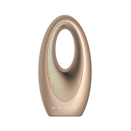 QITECO Mode Portable Wireless Bluetooth Lautsprecher mit FM Radio, Build in Mic TF Karte, Unterstützung AUX zu Subwoofer für Laptop, IPAD, Smartphone sein