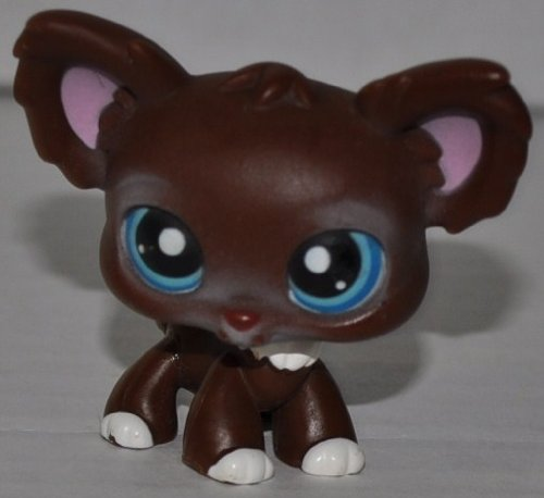 Chihuahua #219 (Brown, Blue Eyes, Pink Ears) - Littlest Pet Shop (Retired) Collector Toy - LPS Collectible Replacement Single Figure - Loose (OOP Out of Package & - Chihuahua Brown