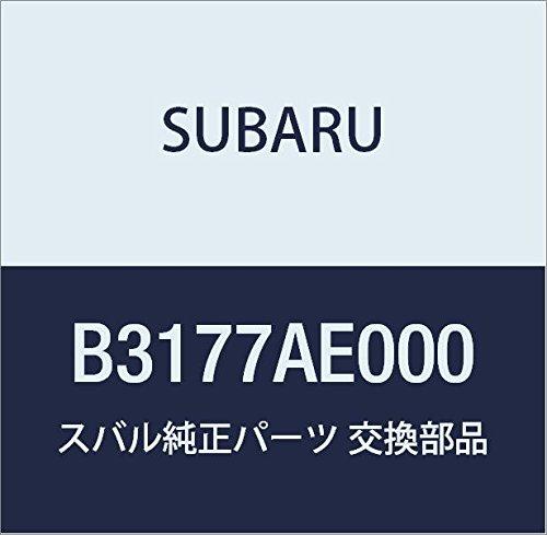SUBARU(スバル) 純正部品 BRZ スプリングチェーン 205/55R16用 B3177AE000 B019BYY42U