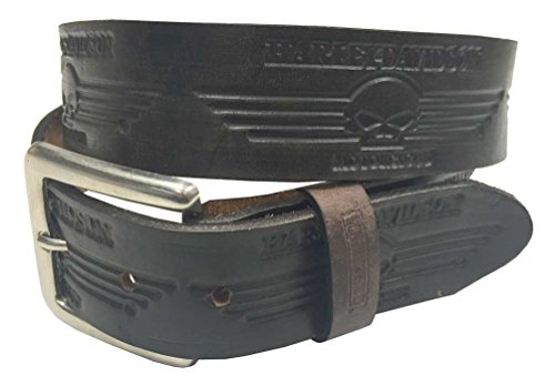 Distressed Embossed Belt (Harley-Davidson Men's Embossed Willie G Skull Distressed Belt, Brown HC203)