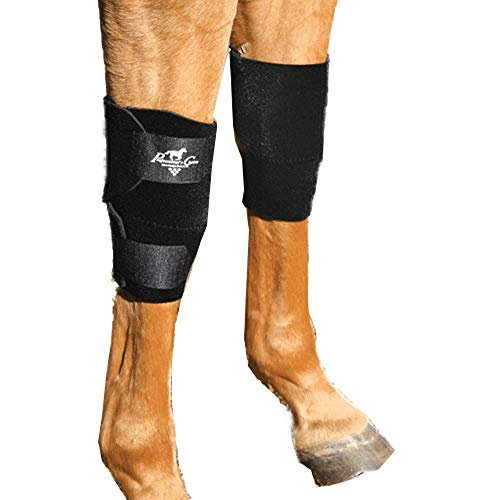 Professionals Choice Equine Knee Boot, Pair (Universal Size, Black)