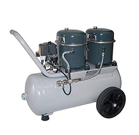 Compresor de Aire Silencioso Sil-Air 100/24 V Werther: Amazon.es: Bricolaje y herramientas