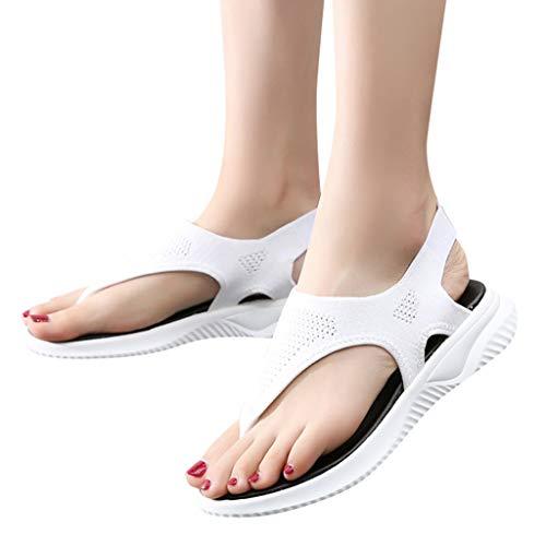 Cewtolkar Women's Sandals Platform Thick Summer Net Surface Flip Flop Shoes Roman Casual Sport Sandals White ()