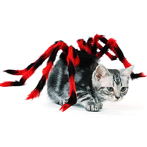 Ollypet Halloween Spider Costume Cat Dog Funny Decor Accessory Adjustable Velcro for Small Medium Large Pet Trendy Party Dress Metal Wire Spider Outfit (L)