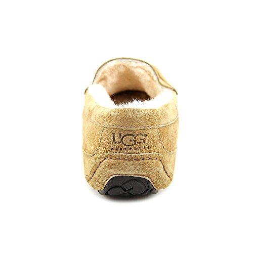Brown Slipper Ascot Men's UGG Slipper Ascot Slipper UGG Brown Ascot Brown Men's UGG UGG Men's 1RxwIgq8