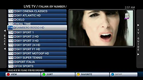 IPTV Subscription Worldwide All Channels on Android box, MAG
