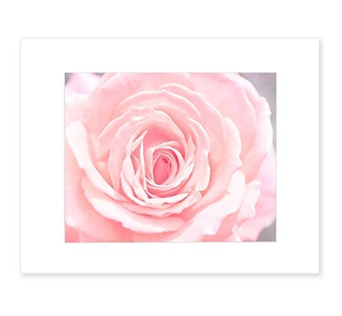 Pink Cottage Chic Crystal - Pink Wall Art, Rose Flower Botanical Artwork, Chic Floral Decor, Girls Bedroom Picture, 8x10 Matted Photographic Print (fits 11x14 frame), 'Pink and Shabby'