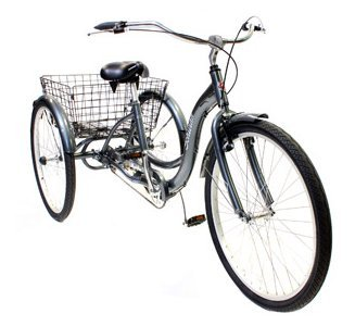 Bike Tricycle Adult 26