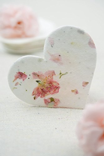 Wayfair Blossom Hearts Seeded Paper Hearts 2.5in 24 Pieces ()