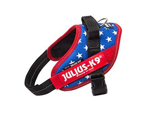 Americana Dog Harness - Julius-K9 IDC-Power Harness with Illuminated Velcro Patches, Ameri-Canis, Size: Mini/49-67 cm