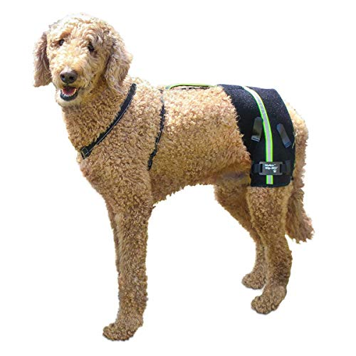 Walkin' Dog Hip Brace Support Harness System Designed for Dogs with Hip...