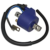 CALTRIC IGNITION COIL FITS UNITED MOTORS V2S 250R SPORT