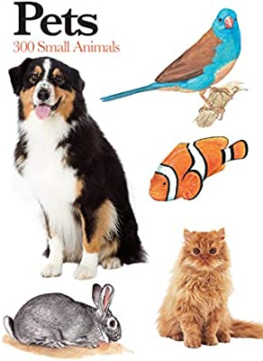 Buy Pets 300 Small Animals Mini Encyclopedia Book Online At Low Prices In India Pets 300 Small Animals Mini Encyclopedia Reviews Ratings Amazon In