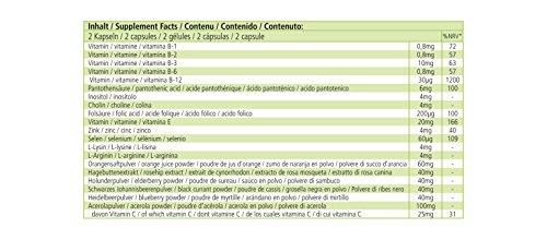 Fruit Plus - Altamente dosificado - 60 cápsulas polvo de ...