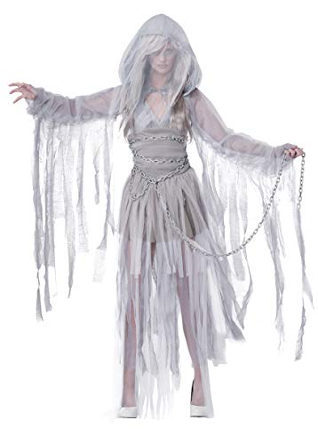 Halloween White Ghost Costume (California Costumes Women's Haunting Beauty Ghost Spirit Costume, Gray,)