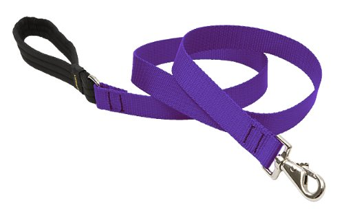 1-InchW, 6-Foot Lupine Dog Lead, 1-Inch, 6-Foot Purple