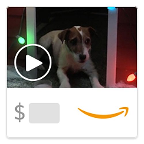 Amazon eGift Card - Christmas Doghouse Dreams (Animated) [American Greetings]