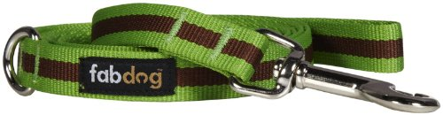 Fab Dog Stripe Leash - Green - Large - 1 inch x 5 feet