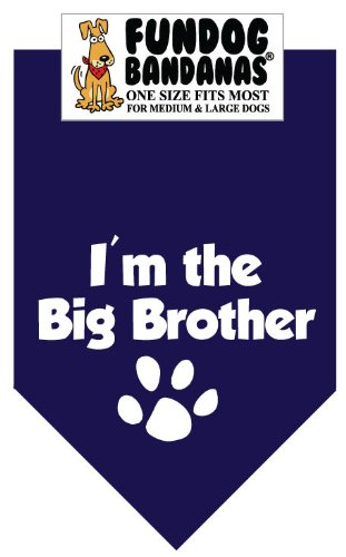 BANDANA Brother Medium Large Dogs product image