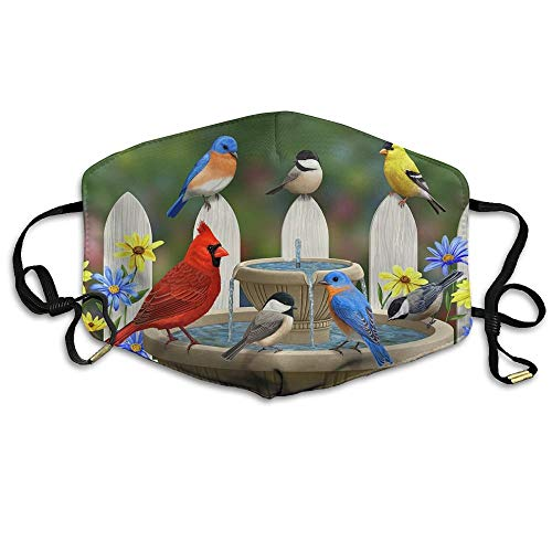 Birdbath Gathering Spring Fountain Printed Mouth Masks Unisex Anti-dust Masks Reusable Face Mask