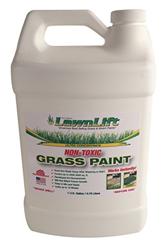 Lawn Paint Concentrated (6 Units), 1 gallon