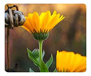 Decorative Mouse Pad Art Print Landscape and Plants Yellow Flower 11 by mcsharks