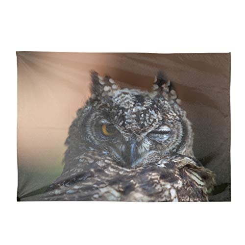 Starfactr Owl Face Beak Feathers Wink Bird Rectangle Tablecloth 60x120 for Table in Washable Polyester Great for Buffet Table Parties Holiday Dinner Wedding & More
