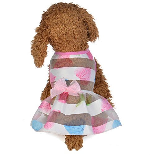 Fashion Princess Cute YingBo Spring and Leaf Creative Dress Pet Pet S AU Summer Fashion Clothes Maple Pink Supplies 577vqUr
