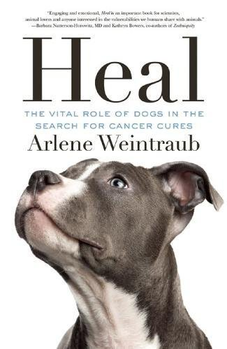 Heal: The Vital Role of Dogs in the Search for Cancer Cures