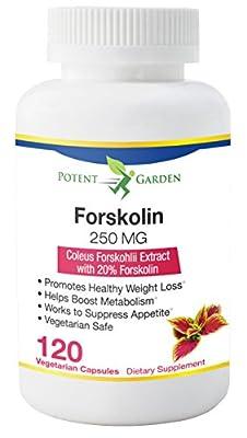 Forskolin by Potent Garden  60 DAY SUPPLY   Highest Grade Weight Loss Supplement For Women & Men   Best Coleus Forskohlii On The Market   Premium Forskolin Supplement Pills 250mg