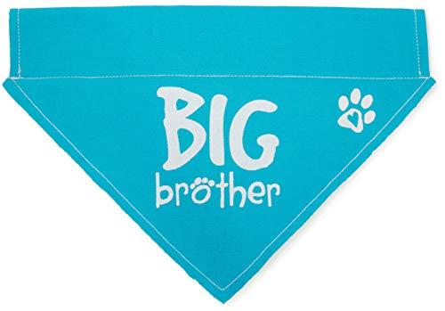 Pavilion - Blue Paw Print Large Dog Slip on The Collar Bandanna - Big Brother