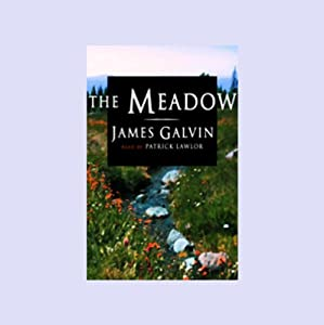The Meadow Audiobook