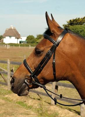 Brown Medium (Cob) Brown Medium (Cob) Heritage English Leather Plain Cavesson Bridle & Reins Pony Cob Full Black Or Brown