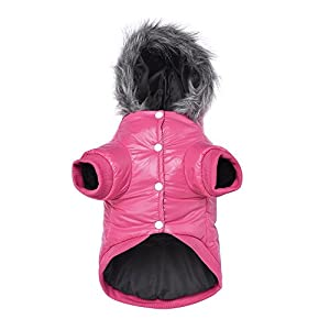 LESYPET Cold Weather Dog Coat for Small to Medium Breeds Dog with Cute Hoodies Pink, Small