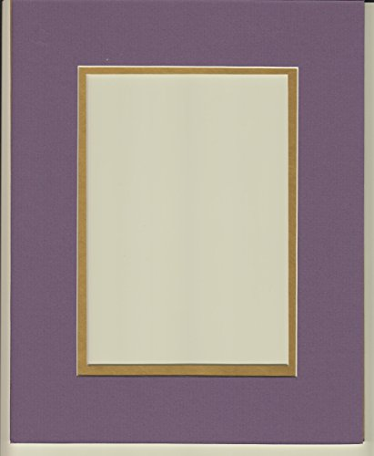 16x20 Purple & Gold Double Picture Mat, Bevel Cut ...