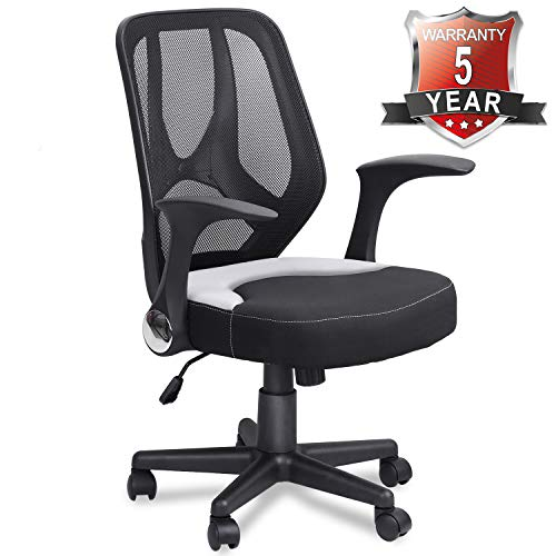 Mysuntown Mid-Back Home Office Mesh Chair,Ergonomic Task Chair with Adjustable Height & Flip-Up Armrests, Executive Swivel Desk Chair (Black)
