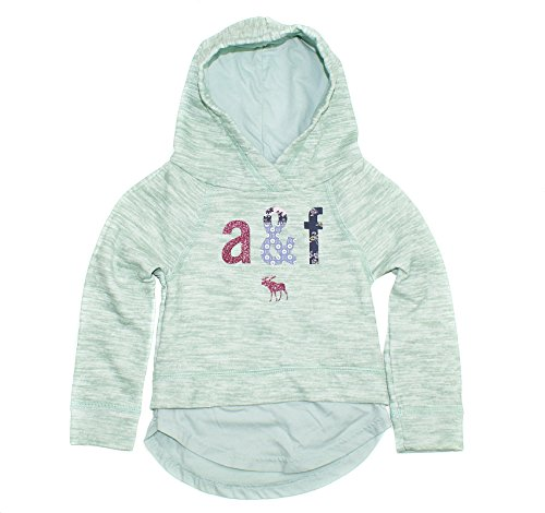 abercrombie-fitch-girls-layered-logo-graphic-hoodie-013-3-4-mint-green