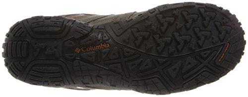 Columbia Men's Redmond Waterproof Hiking Shoe Pebble, Dark Ginger 7.5 D US by Columbia (Image #3)