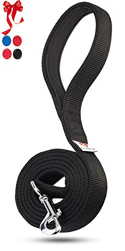 PetsLovers 2-Layer Dog Leash - Sturdy Nylon Strap, Padded Handle - 6 Feet Long, 1 Inch - Thick Single Leash Nylon