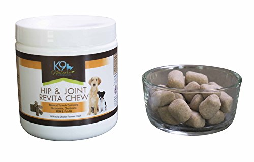 K9 Nature Glucosamine Chondroitin MSM Pure Fish Oil Chews for Small or Large Dogs – Pet Hip and Joint Supplement with Omega 3 for Senior Dog Health & Anti Inflammatory Arthritis Pain Relief 60 Treats by K9 Nature Supplements